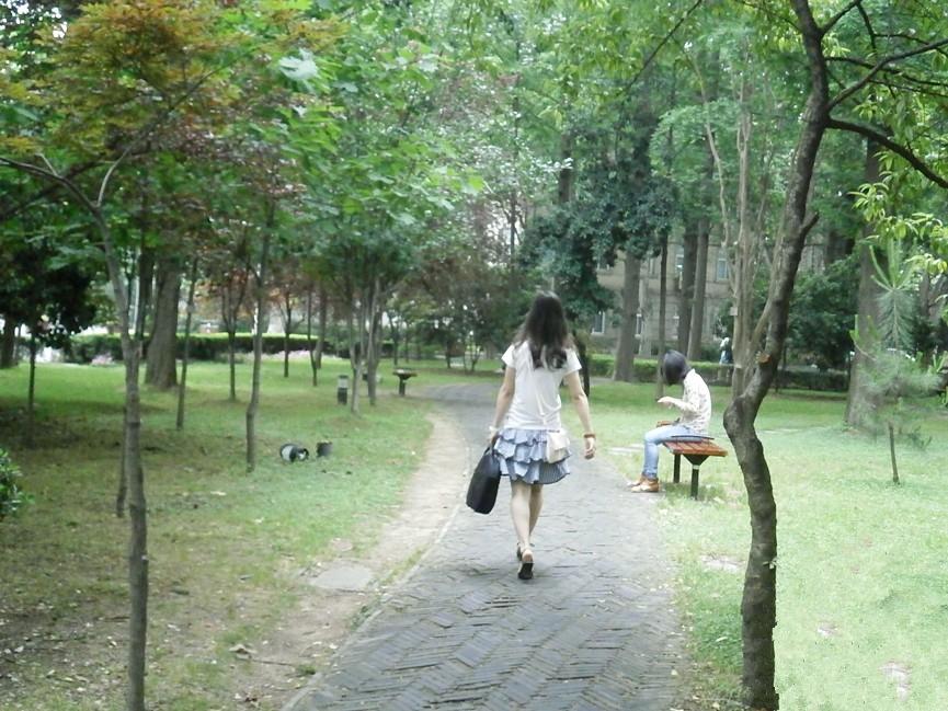 南京林业大学 绿化