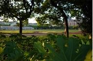 上海大学 运动场所