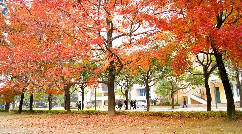 福州大学 公园