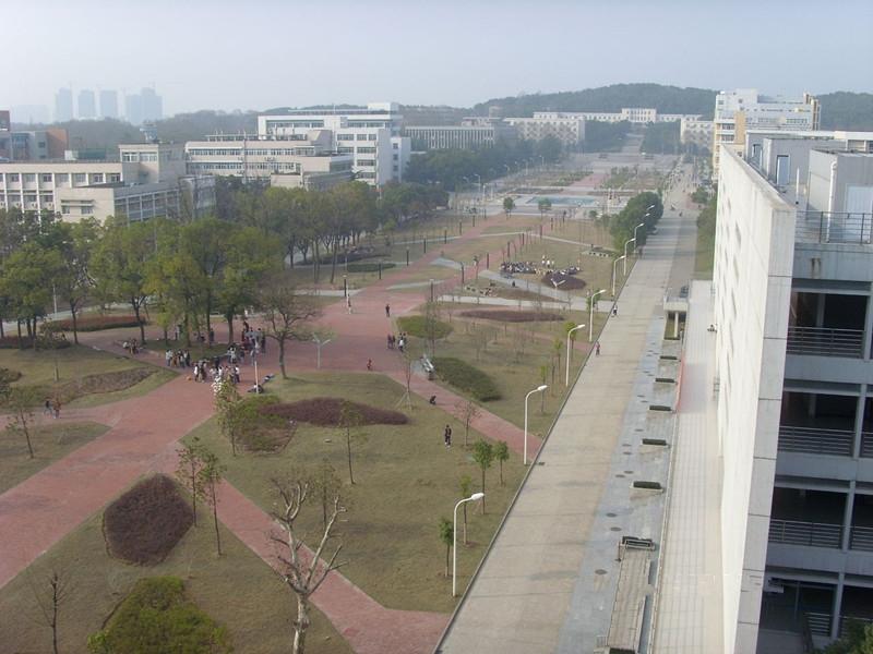 华中农业大学 食用菌 图片合集
