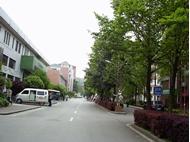 湖南师范大学 道路