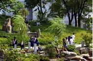 中南财经政法大学 毕业