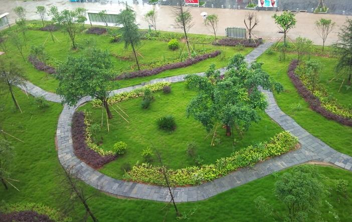 大学校园公园设计图