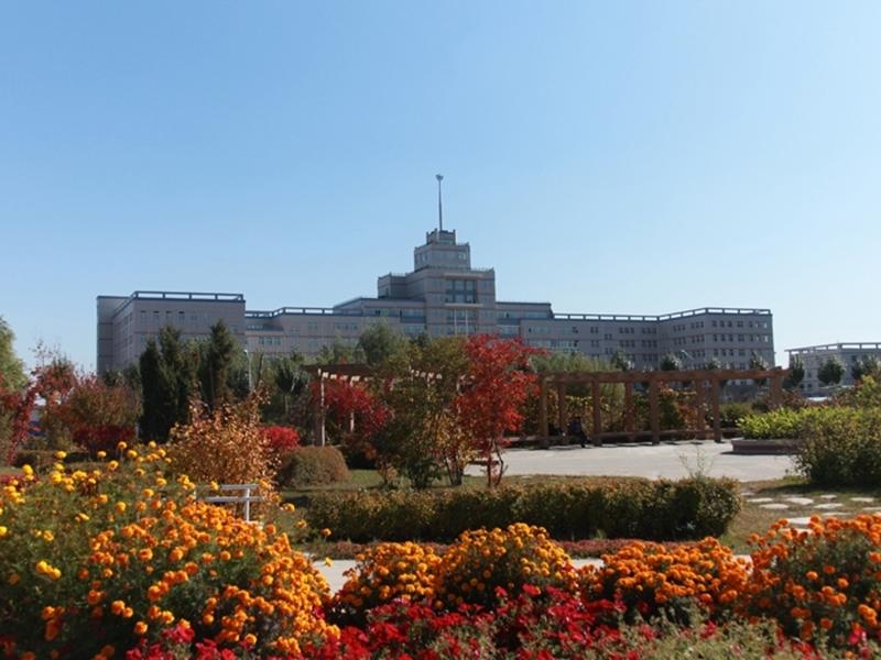哈尔滨学校的风景