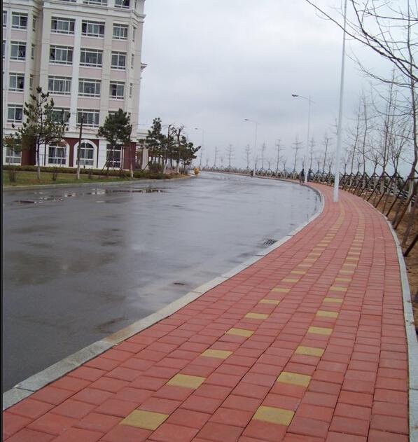 青岛港湾职业技术学院 道路