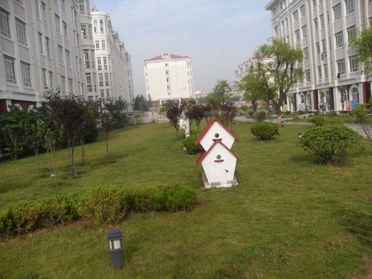 青岛港湾职业技术学院 绿化