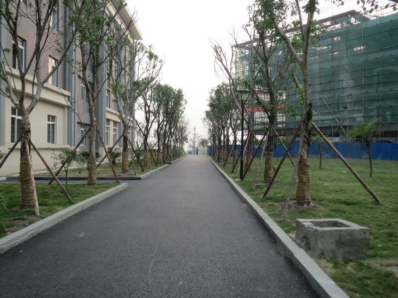 学院街道线路图