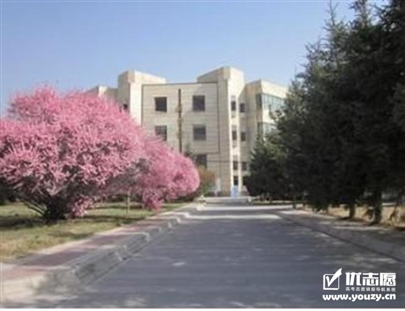 青海大学 图书馆