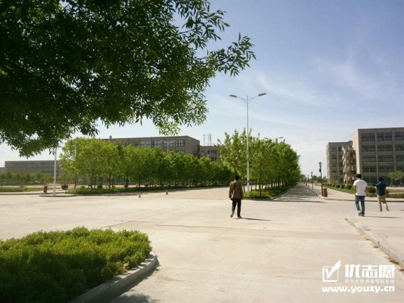 山东海事职业学院 绿化