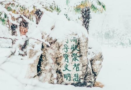 南京8所高校公布就业质量报告