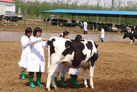 高考专业解读:动物防疫与检疫